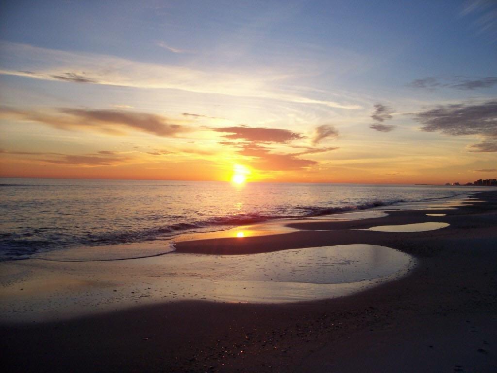 Orange Beach Alabama Rental Condos Accommodations At